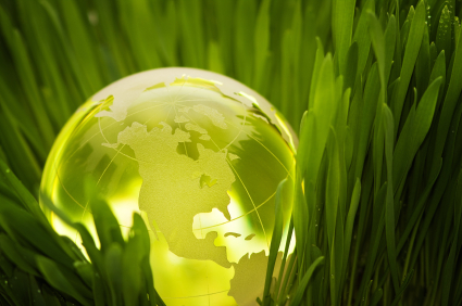 Sustainability: the role of the ingredient supplier