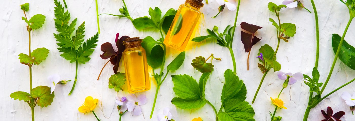 Natural extracts to be placed under the spotlight at in-cosmetics Asia