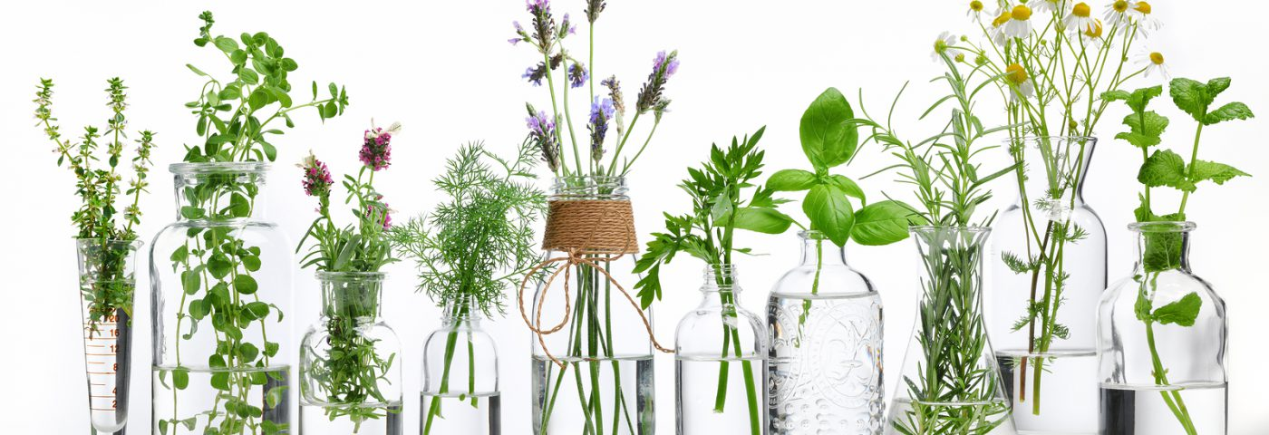 Blending and formulating with essential oils – Video