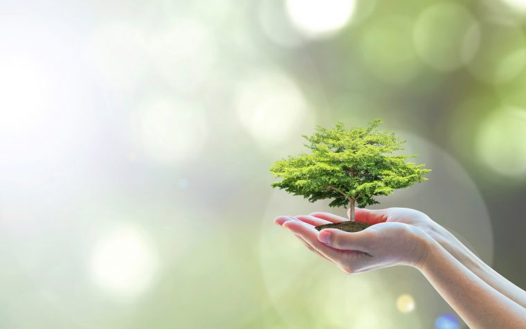 Q&A with Clariant and experiences fit for the senses…and the planet