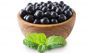 Blackcurrant extract for cosmetics