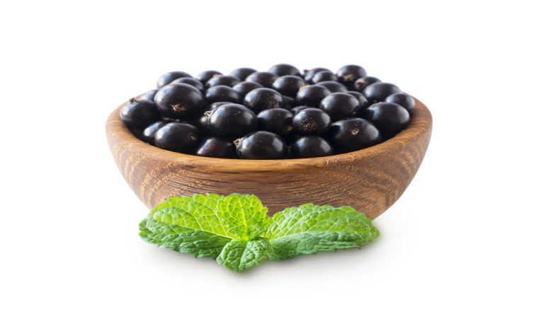 Blackcurrant extract for personal care ingredients