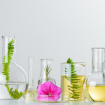 Let's talk about microalgae, biotech and sustainability – Q&A with Greentech