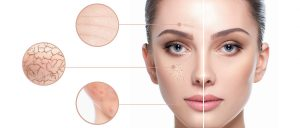 artigo tecnico sobre a pele