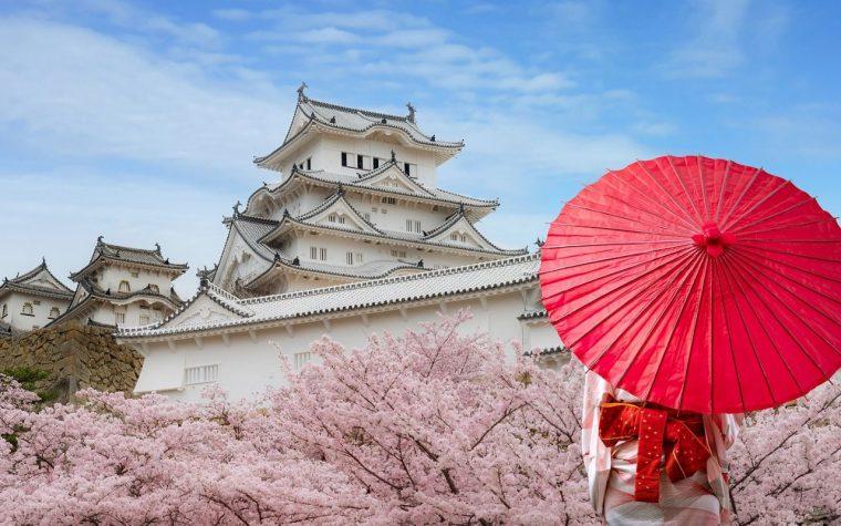 women in japanese kimono admiring view
