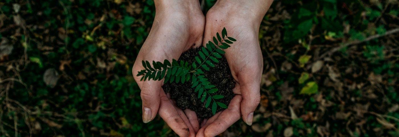 Circular economy or bust: A Q&A on sustainability with Emma Lewisham